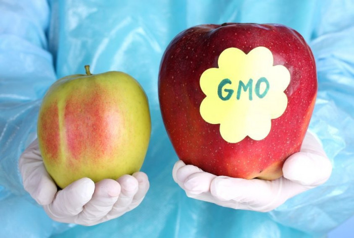 ГМО фото 2